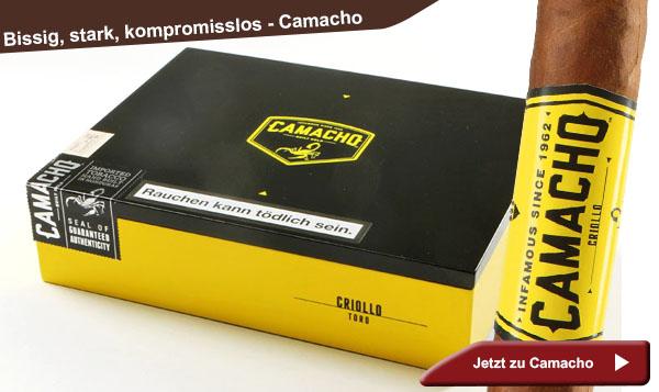 Camacho Bold