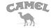 Camel Tabak