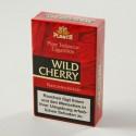 Planta Wild Cherry Filter Cigarillos (10er Gebinde)