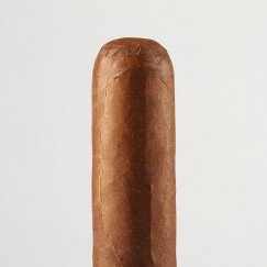 Rocky Patel The Edge Corojo B52