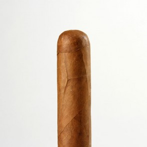 Bundle Selection Dominikanische Republik Short Robusto
