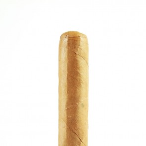 Don Pedro Robusto