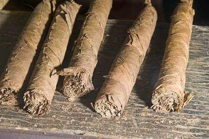 Unfertige Zigarren