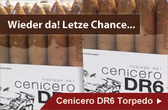 Cenicero DR6 Torpedo - jetzt vorbestellen!